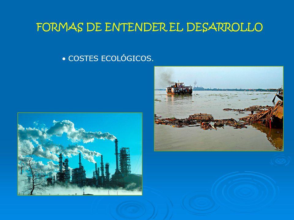 FORMAS DE ENTENDER EL DESARROLLO COSTES ECOLÓGICOS.