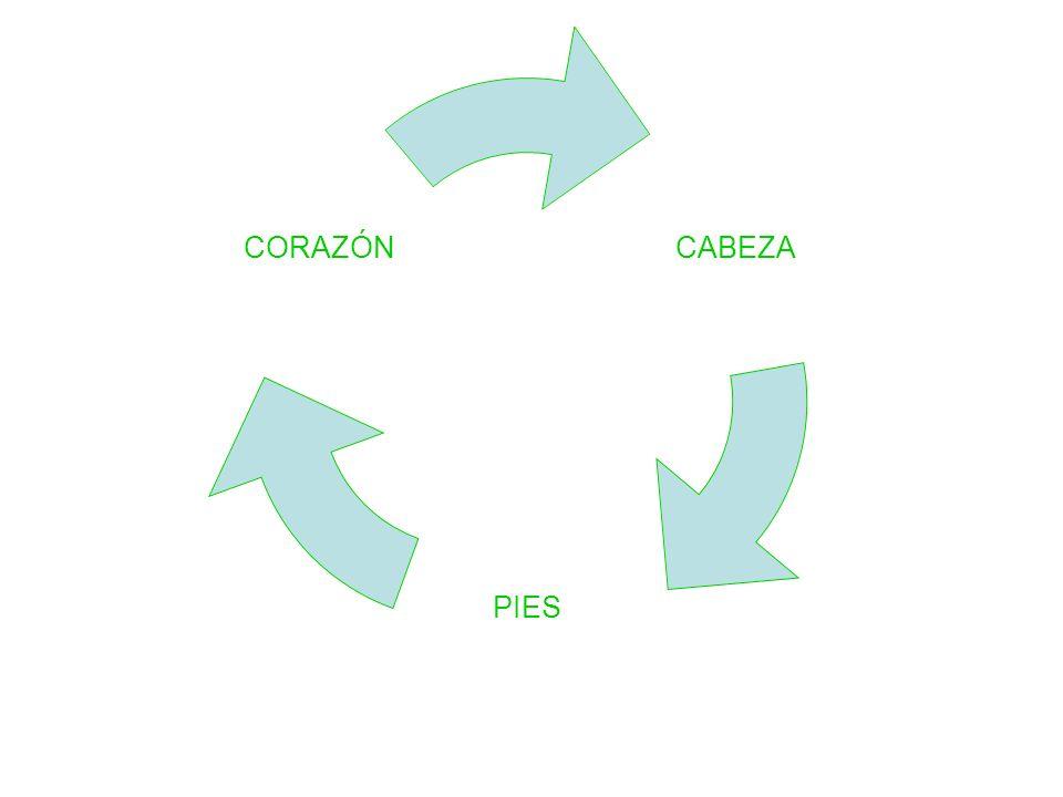 CABEZA PIES CORAZÓN
