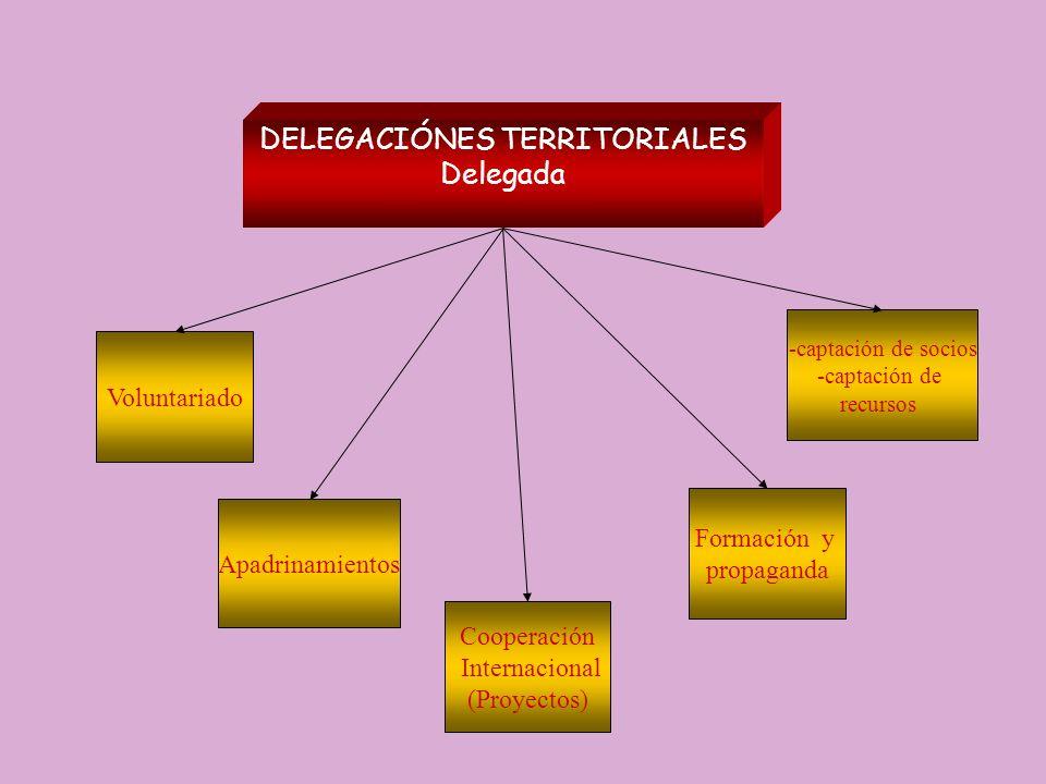 DELEGACIÓNES TERRITORIALES Delegada Voluntariado -captación de socios -captación de recursos Apadrinamientos Formación y propaganda Cooperación Intern
