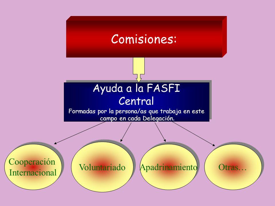 Comisiones: Ayuda a la FASFI Central Formadas por la persona/as que trabaja en este campo en cada Delegación. Ayuda a la FASFI Central Formadas por la