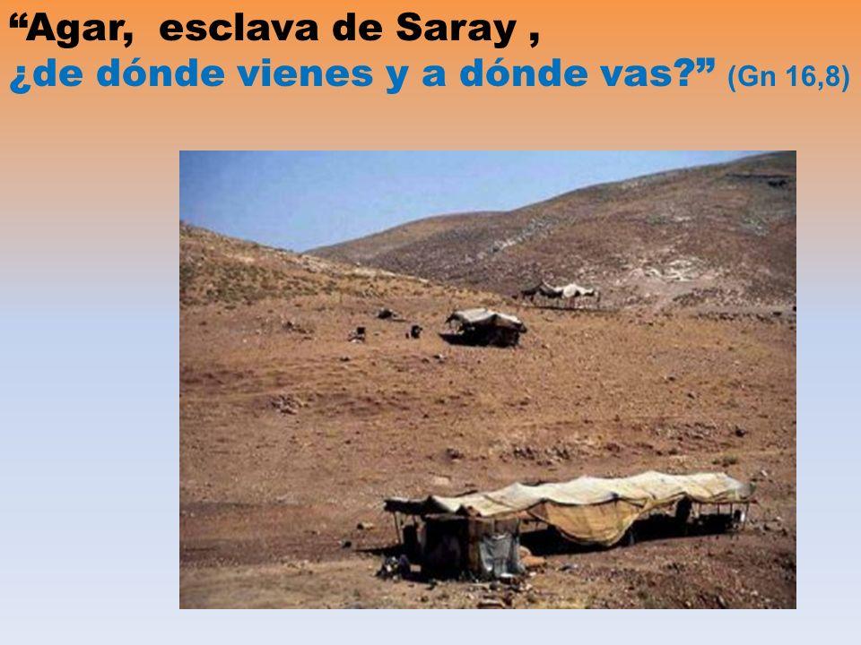Agar, esclava de Saray, ¿de dónde vienes y a dónde vas (Gn 16,8)