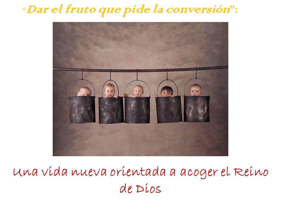 Dar el fruto que pide la conversión: Una vida nueva orientada a acoger el Reino de Dios