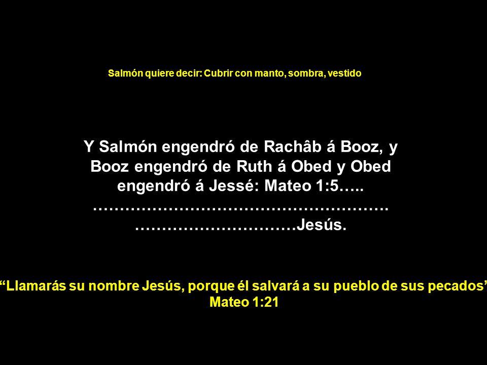 Y Salmón engendró de Rachâb á Booz, y Booz engendró de Ruth á Obed y Obed engendró á Jessé: Mateo 1:5….. ………………………………………………. …………………………Jesús. Salmón q