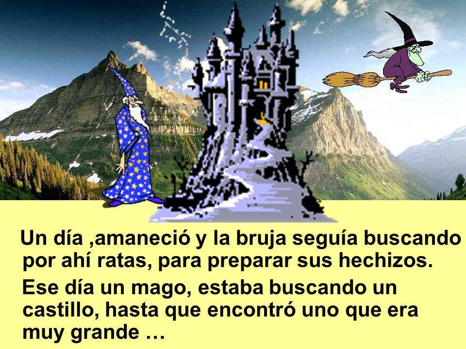 Un día,amaneció y la bruja seguía buscando por ahí ratas, para preparar sus hechizos.