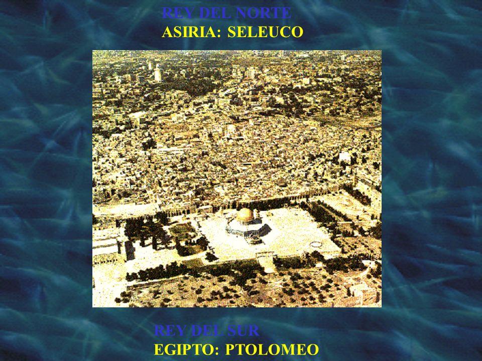 REY DEL SUR EGIPTO: PTOLOMEO REY DEL NORTE ASIRIA: SELEUCO