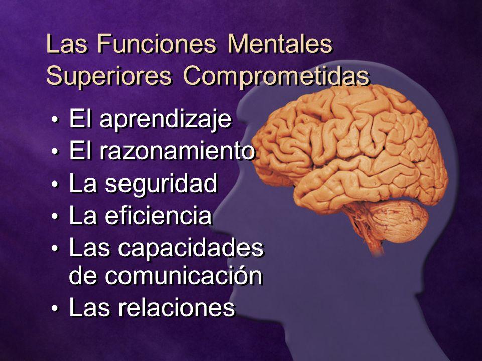 Las Funciones Mentales Superiores Comprometidas El aprendizaje El razonamiento La seguridad La eficiencia Las capacidades de comunicación Las relacion