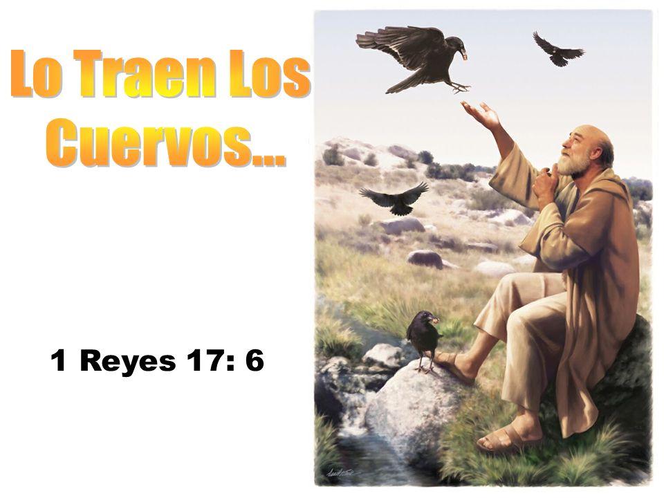 1 Reyes 17: 6