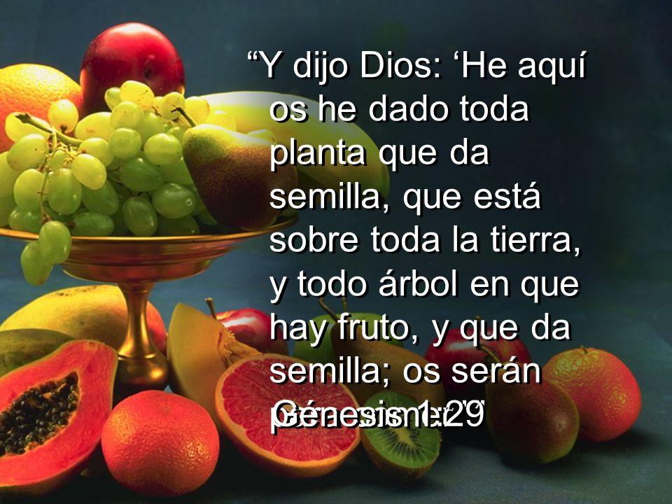Y dijo Dios: He aquí os he dado toda planta que da semilla, que está sobre toda la tierra, y todo árbol en que hay fruto, y que da semilla; os serán p