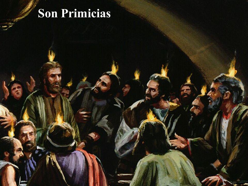 Son Primicias