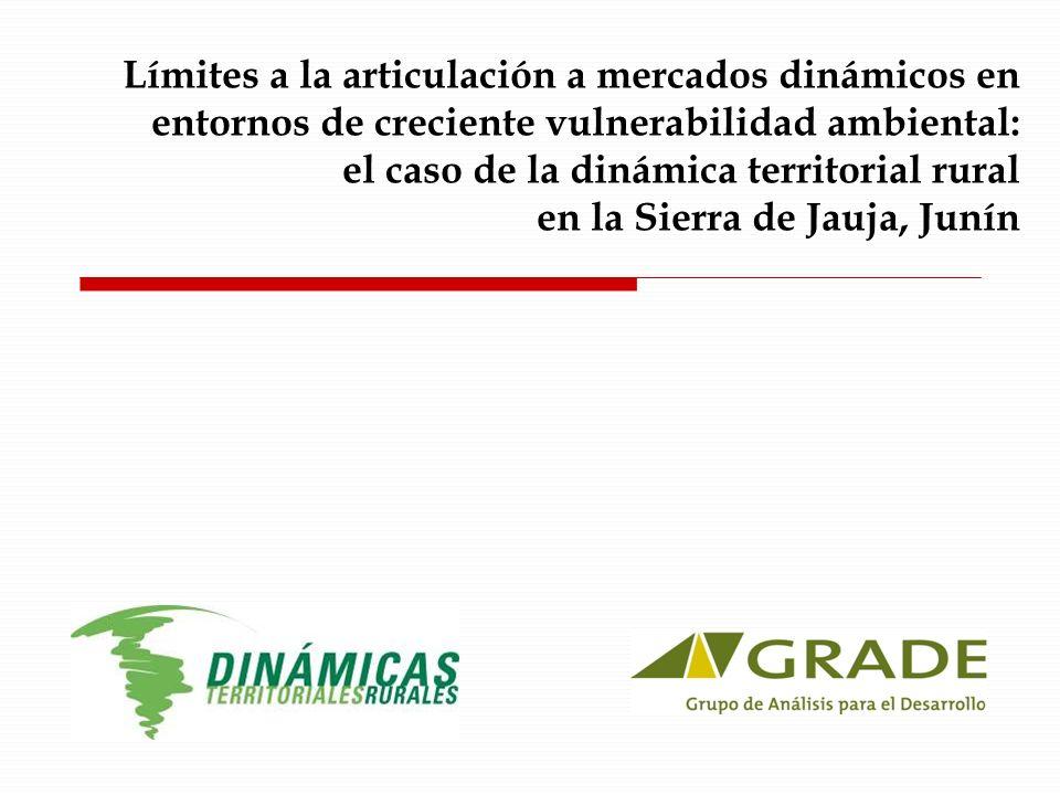 Islas de dinamismo II Alcachofa sin espinas para agroexportación Venta a Agro-mantaro (empresa de fuera del territorio) Requerían escala mínima para acceder a cierto capital de trabajo, educación para dominar manejo tecnificado Leche – articulación a la nueva empresa Gloria (ubicada en Concepción).