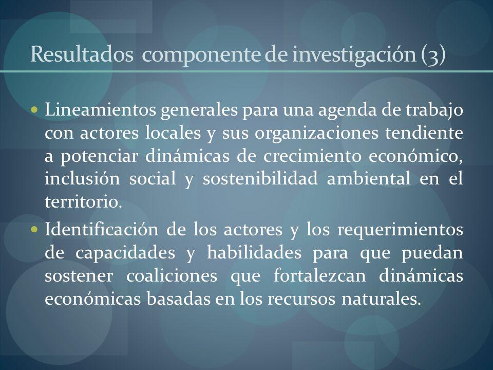 Resultados componente de investigación (3) Lineamientos generales para una agenda de trabajo con actores locales y sus organizaciones tendiente a pote