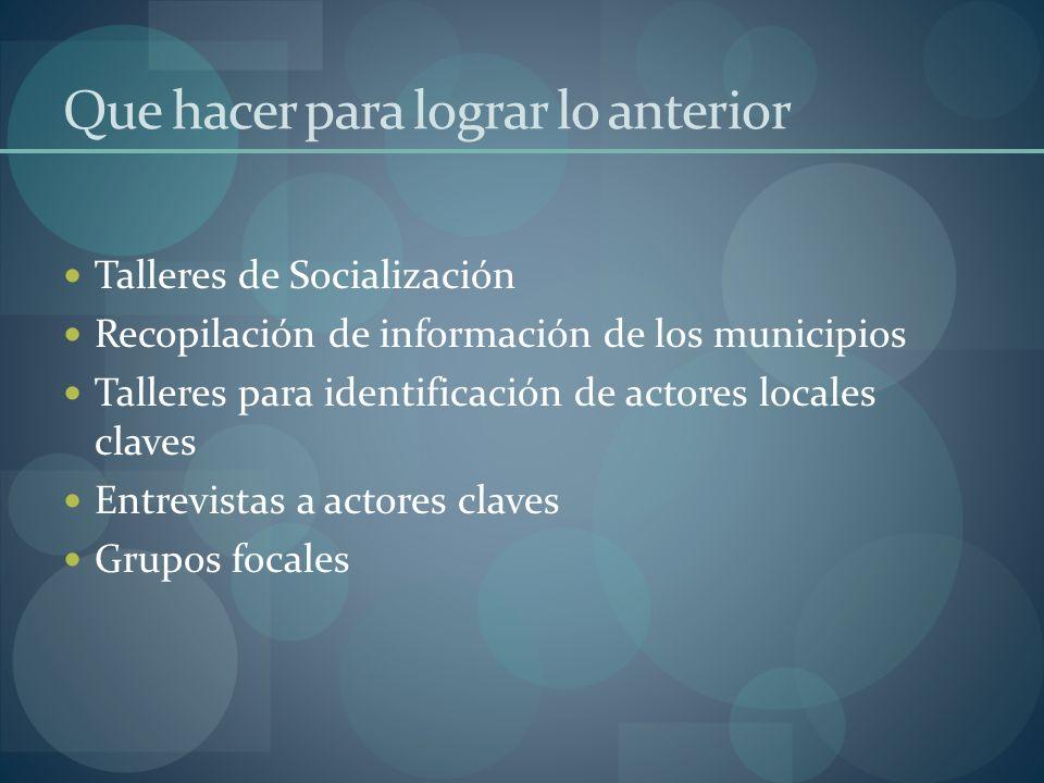 Que hacer para lograr lo anterior Talleres de Socialización Recopilación de información de los municipios Talleres para identificación de actores loca