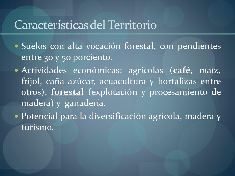 Características del Territorio Suelos con alta vocación forestal, con pendientes entre 30 y 50 porciento. Actividades económicas: agrícolas (café, maí