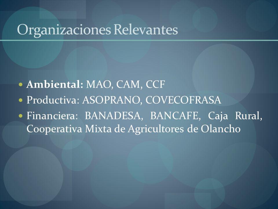 Organizaciones Relevantes Ambiental: MAO, CAM, CCF Productiva: ASOPRANO, COVECOFRASA Financiera: BANADESA, BANCAFE, Caja Rural, Cooperativa Mixta de A
