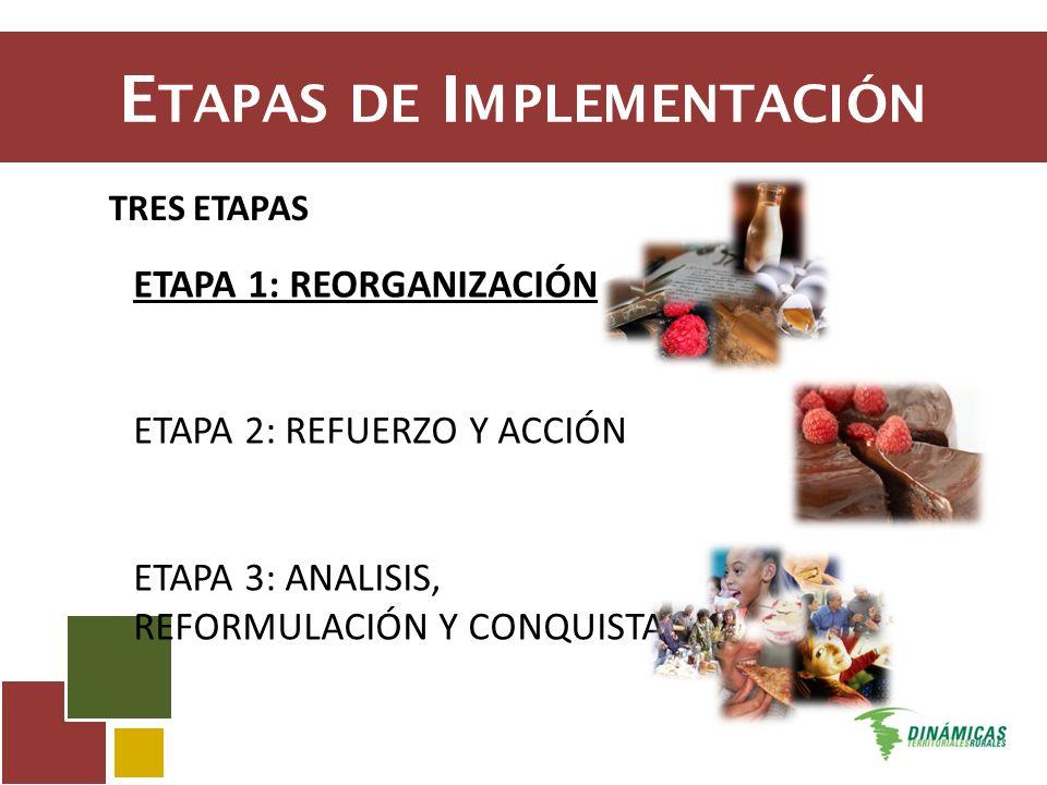 E TAPAS DE I MPLEMENTACIÓN TRES ETAPAS ETAPA 1: REORGANIZACIÓN ETAPA 2: REFUERZO Y ACCIÓN ETAPA 3: ANALISIS, REFORMULACIÓN Y CONQUISTA