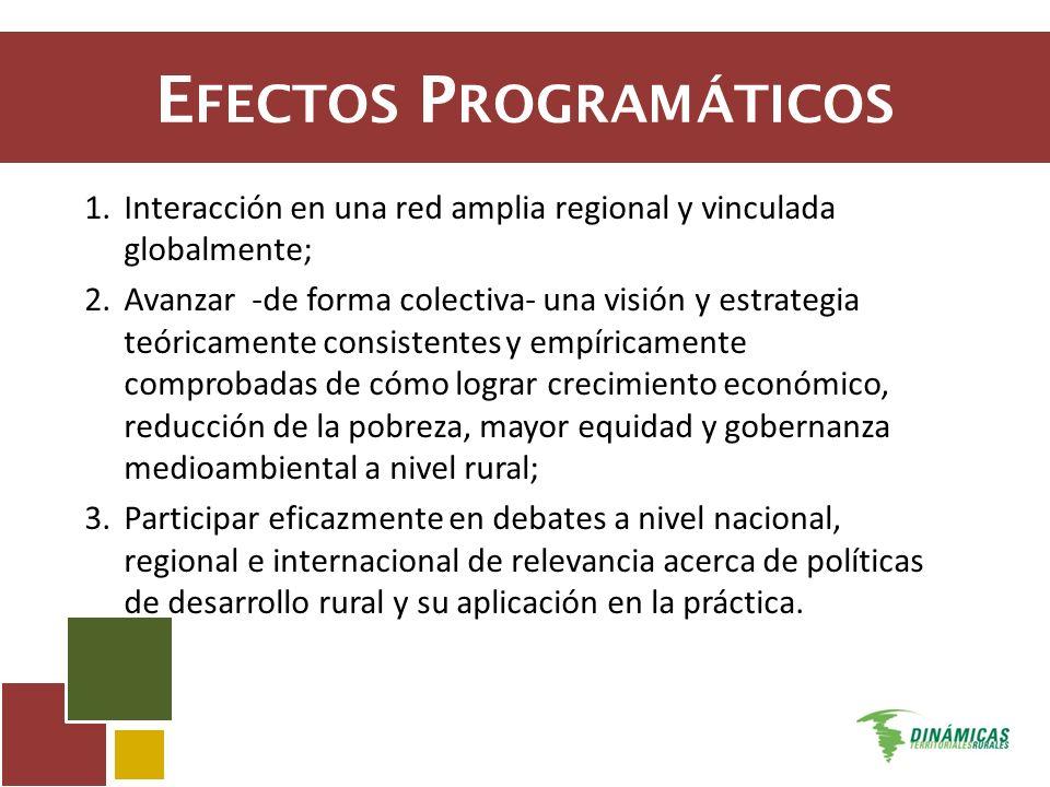 E FECTOS P ROGRAMÁTICOS 1.Interacción en una red amplia regional y vinculada globalmente; 2.Avanzar -de forma colectiva- una visión y estrategia teóri