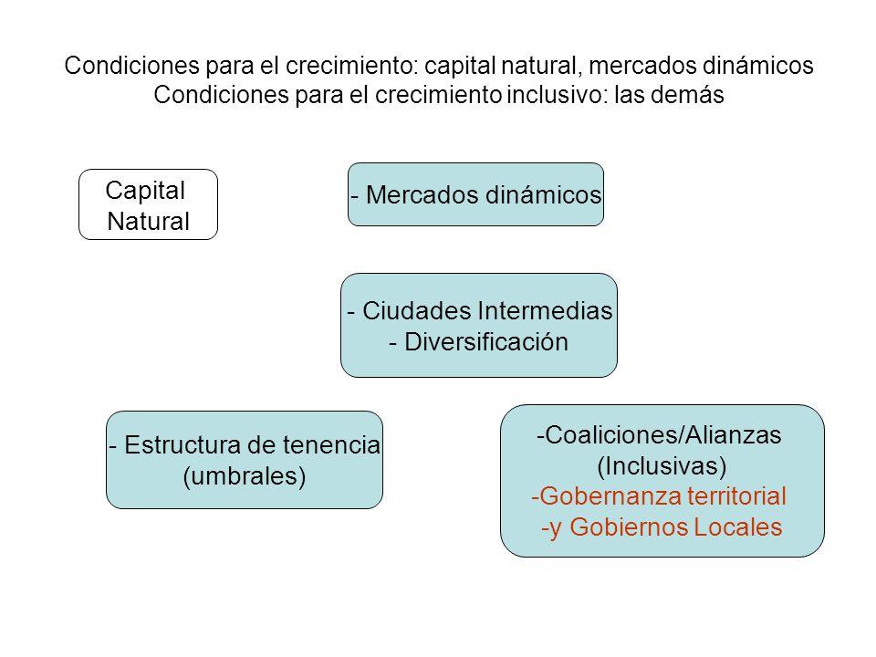 Condiciones para el crecimiento: capital natural, mercados dinámicos Condiciones para el crecimiento inclusivo: las demás Capital Natural - Mercados dinámicos - Ciudades Intermedias - Diversificación -Coaliciones/Alianzas (Inclusivas) -Gobernanza territorial -y Gobiernos Locales