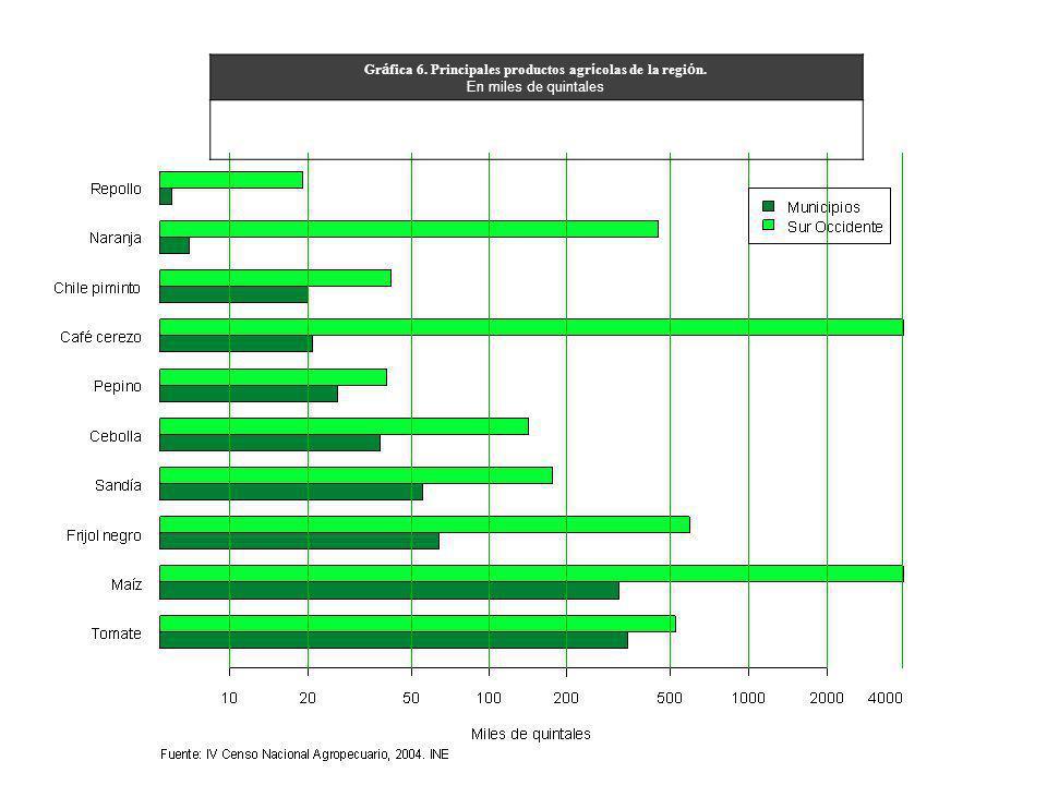 Gr á fica 6. Principales productos agr í colas de la regi ó n. En miles de quintales
