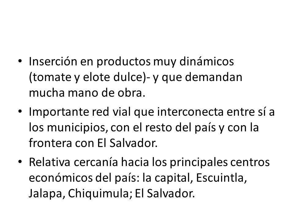 Inserción en productos muy dinámicos (tomate y elote dulce) y que demandan mucha mano de obra. Importante red vial que interconecta entre sí a los mun