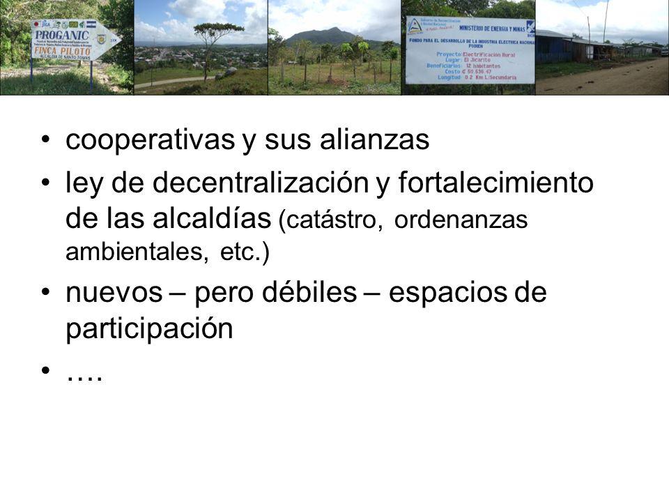 cooperativas y sus alianzas ley de decentralización y fortalecimiento de las alcaldías (catástro, ordenanzas ambientales, etc.) nuevos – pero débiles – espacios de participación ….