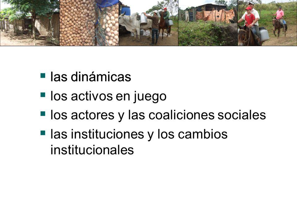 las dinámicas los activos en juego los actores y las coaliciones sociales las instituciones y los cambios institucionales las dinámicas