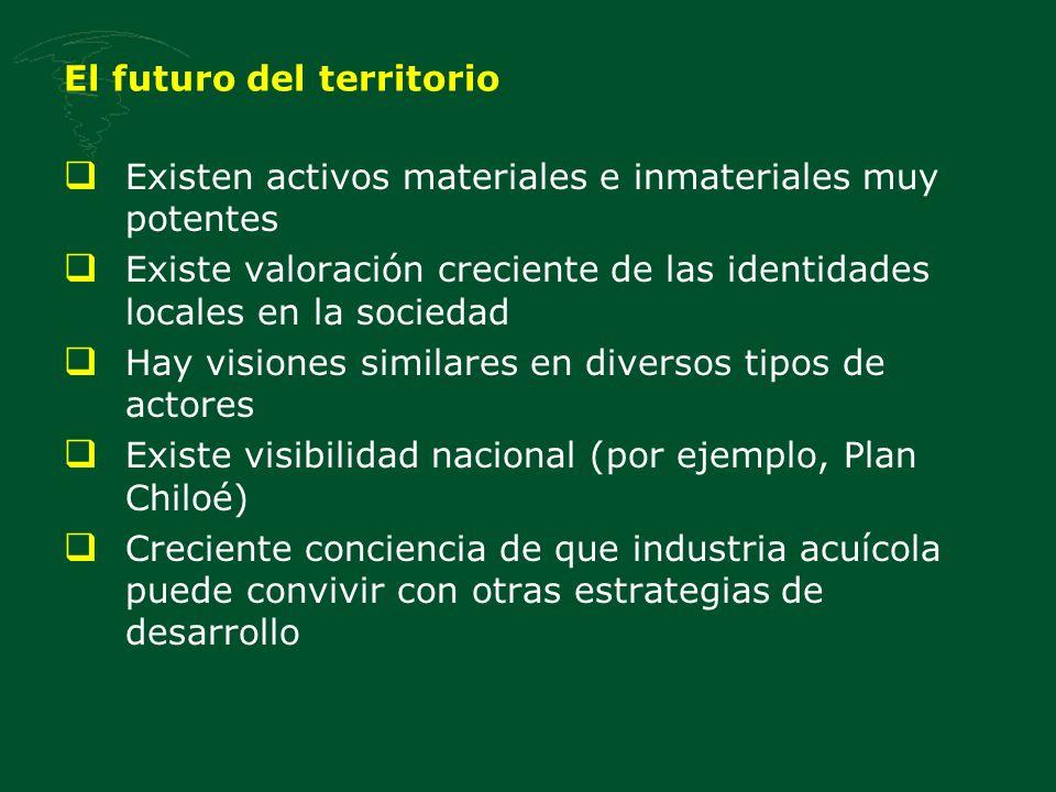 El futuro del territorio Existen activos materiales e inmateriales muy potentes Existe valoración creciente de las identidades locales en la sociedad