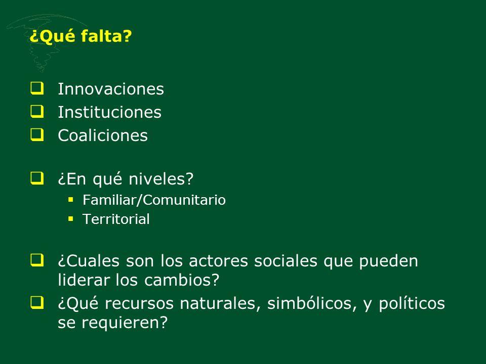 ¿Qué falta? Innovaciones Instituciones Coaliciones ¿En qué niveles? Familiar/Comunitario Territorial ¿Cuales son los actores sociales que pueden lider