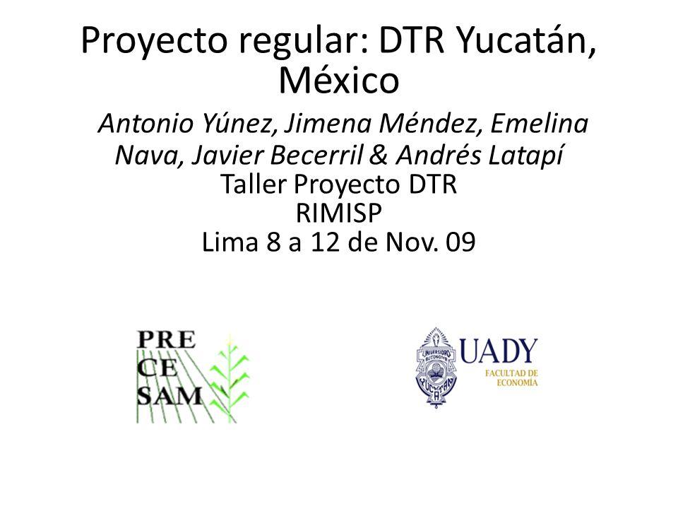 Proyecto regular: DTR Yucatán, México Antonio Yúnez, Jimena Méndez, Emelina Nava, Javier Becerril & Andrés Latapí Taller Proyecto DTR RIMISP Lima 8 a 12 de Nov.