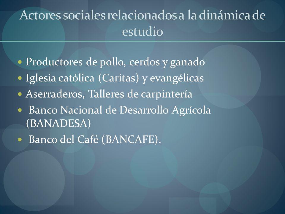 Actores sociales relacionados a la dinámica de estudio Productores de pollo, cerdos y ganado Iglesia católica (Caritas) y evangélicas Aserraderos, Tal