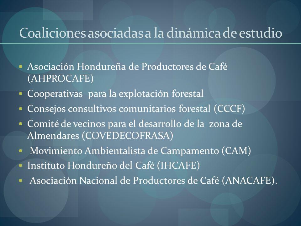 Coaliciones asociadas a la dinámica de estudio Asociación Hondureña de Productores de Café (AHPROCAFE) Cooperativas para la explotación forestal Conse