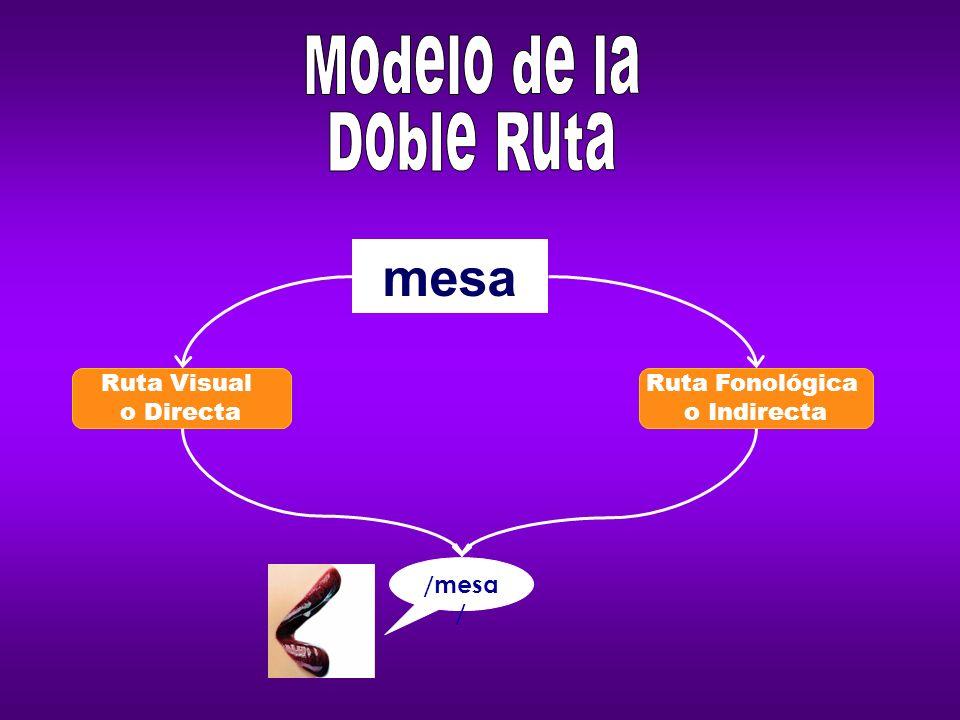Ruta Visual o Directa Dislexia visual, superficial, léxica, diseidética.