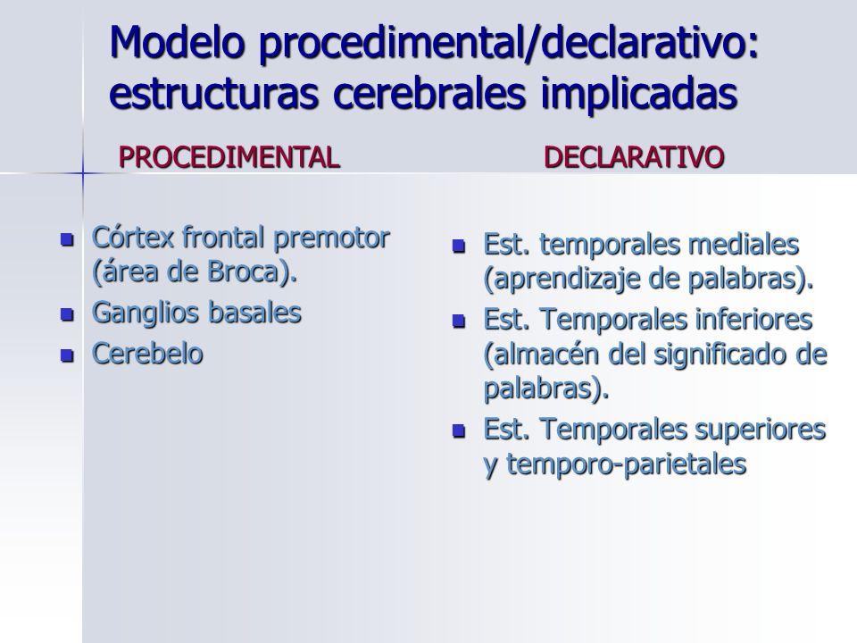 Modelo procedimental/declarativo: estructuras cerebrales implicadas Córtex frontal premotor (área de Broca). Córtex frontal premotor (área de Broca).