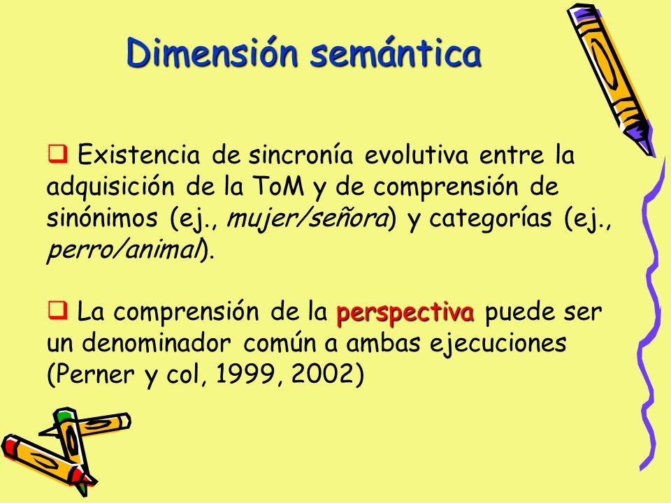 Dimensión semántica Existencia de sincronía evolutiva entre la adquisición de la ToM y de comprensión de sinónimos (ej., mujer/señora) y categorías (ej., perro/animal).