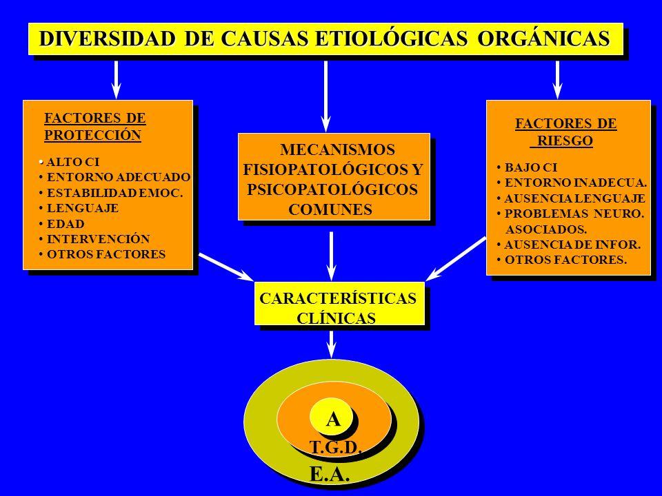 DIVERSIDAD DE CAUSAS ETIOLÓGICAS ORGÁNICAS DIVERSIDAD DE CAUSAS ETIOLÓGICAS ORGÁNICAS FACTORES DE PROTECCIÓN ALTO CI ENTORNO ADECUADO ESTABILIDAD EMOC