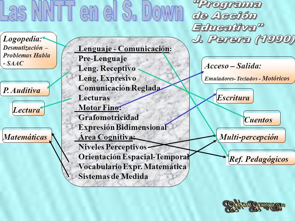 Lenguaje - Comunicación: Pre-Lenguaje Leng. Receptivo Leng. Expresivo Comunicación Reglada Lecturas Motor Fino: Grafomotricidad Expresión Bidimensiona