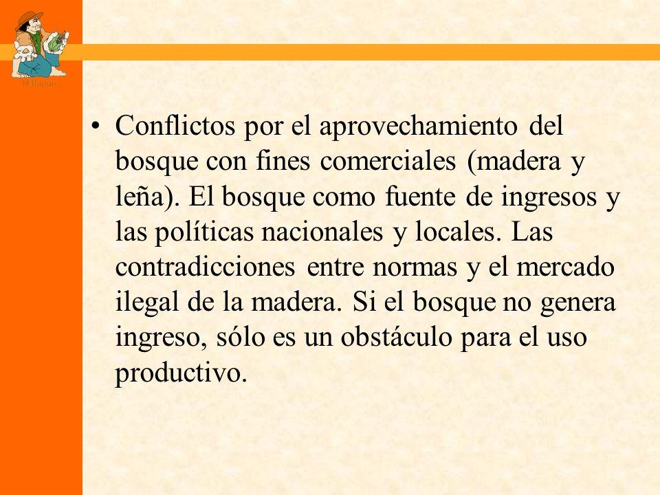 Conflictos por el aprovechamiento del bosque con fines comerciales (madera y leña).