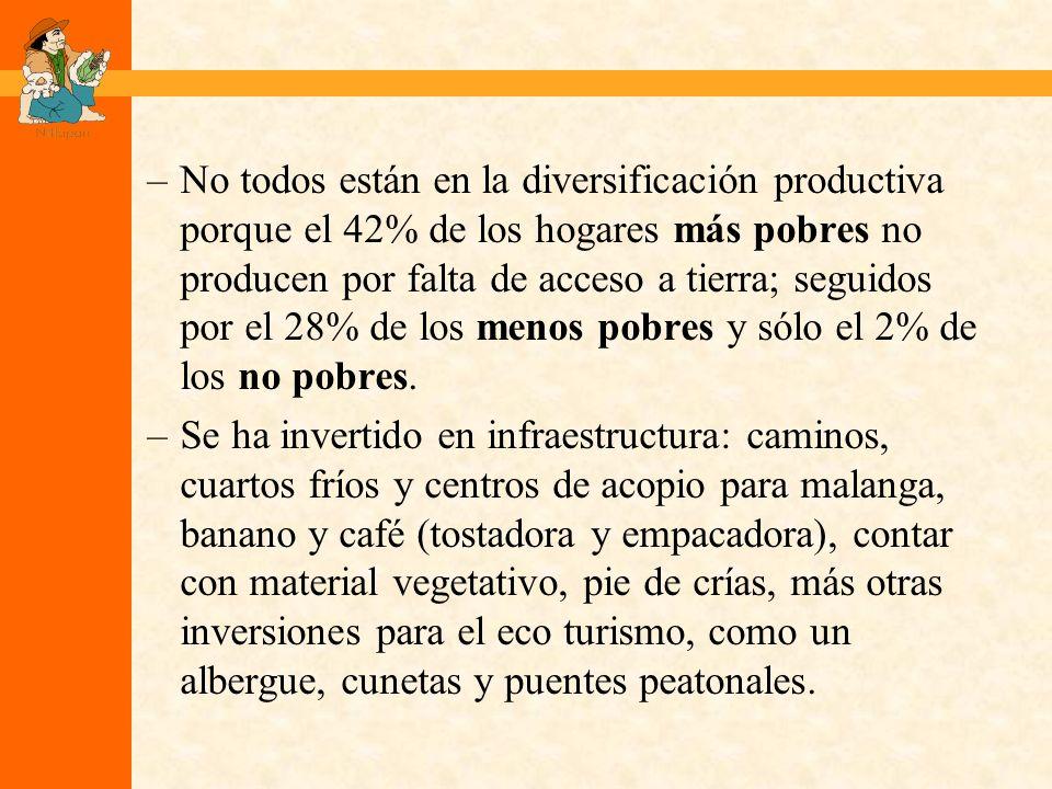 –No todos están en la diversificación productiva porque el 42% de los hogares más pobres no producen por falta de acceso a tierra; seguidos por el 28% de los menos pobres y sólo el 2% de los no pobres.