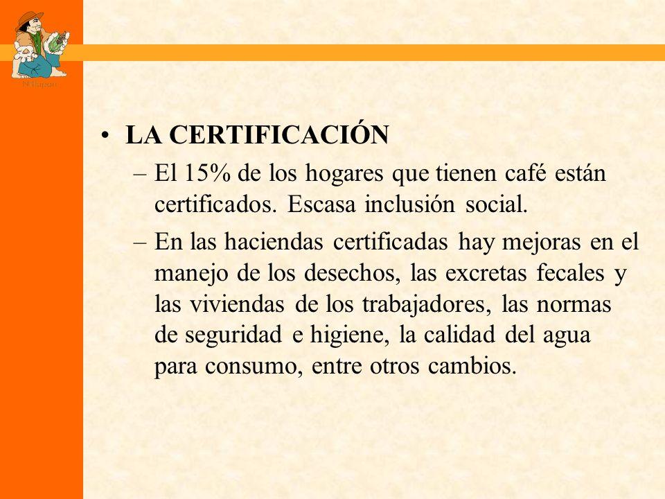 LA CERTIFICACIÓN –El 15% de los hogares que tienen café están certificados.
