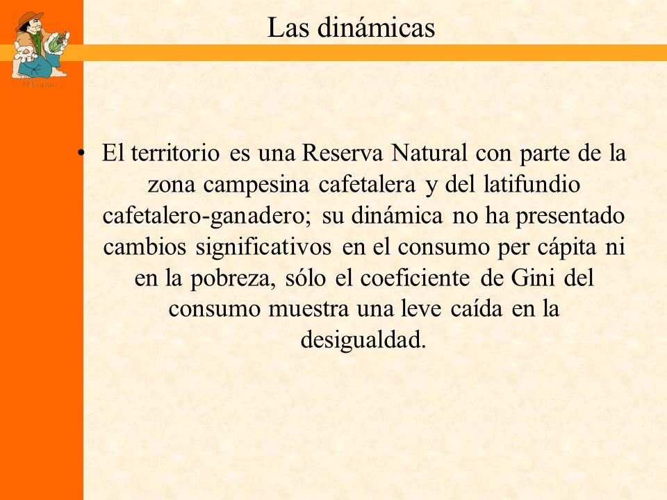 La racionalidad que predominó es que la sostenibilidad ambiental va en contra de lograr la mayor rentabilidad posible del usufructo de los recursos naturales.