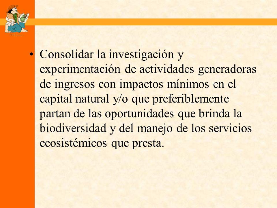 Consolidar la investigación y experimentación de actividades generadoras de ingresos con impactos mínimos en el capital natural y/o que preferiblemente partan de las oportunidades que brinda la biodiversidad y del manejo de los servicios ecosistémicos que presta.