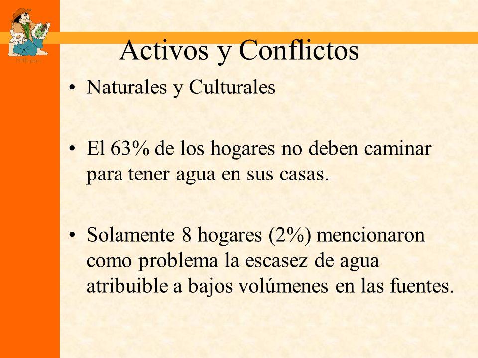 Activos y Conflictos Naturales y Culturales El 63% de los hogares no deben caminar para tener agua en sus casas.