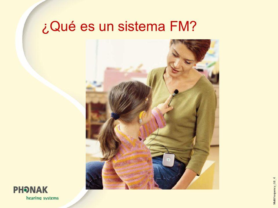 MultiFrequency_GB _4 ¿Qué es un sistema FM?