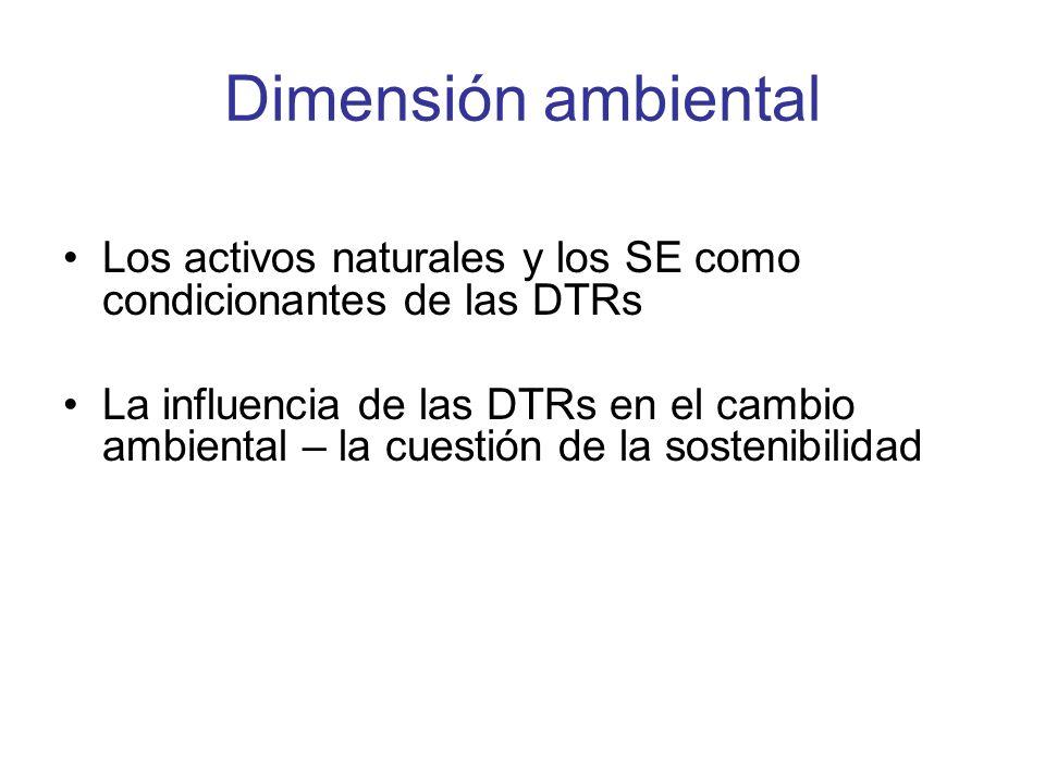 Dimensión ambiental Los activos naturales y los SE como condicionantes de las DTRs La influencia de las DTRs en el cambio ambiental – la cuestión de la sostenibilidad