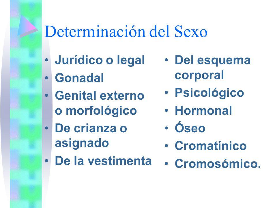 Determinación del Sexo Jurídico o legal Gonadal Genital externo o morfológico De crianza o asignado De la vestimenta Del esquema corporal Psicológico