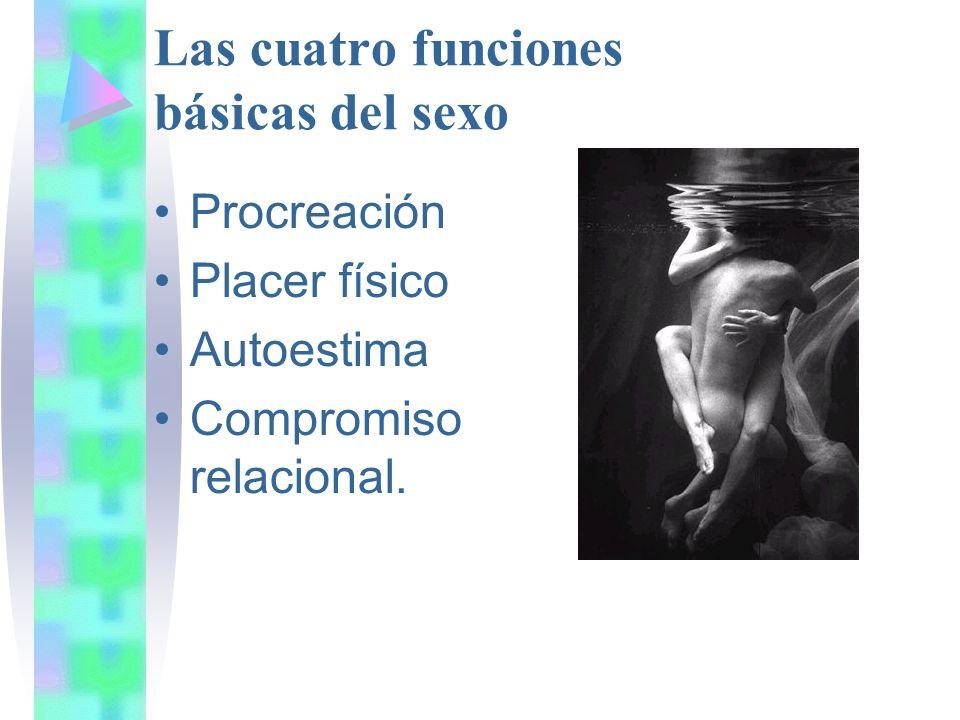 Las cuatro funciones básicas del sexo Procreación Placer físico Autoestima Compromiso relacional.