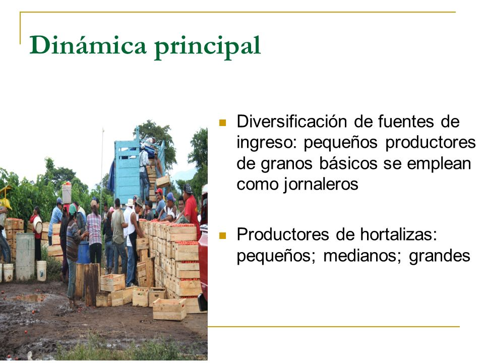 Diversificación de fuentes de ingreso: pequeños productores de granos básicos se emplean como jornaleros Productores de hortalizas: pequeños; medianos
