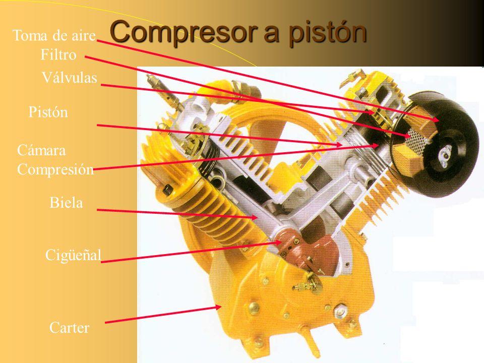 Compresor a pistón Toma de aire Filtro Válvulas Pistón Cámara Compresión Biela Cigüeñal Carter