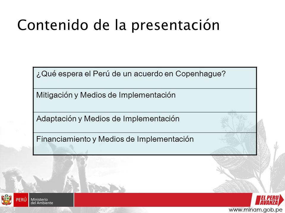 Contenido de la presentación ¿Qué espera el Perú de un acuerdo en Copenhague.
