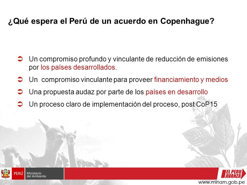 Un compromiso profundo y vinculante de reducción de emisiones por los países desarrollados.
