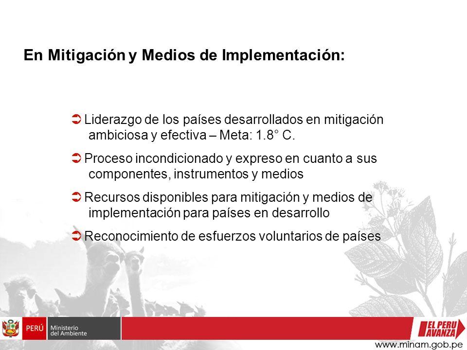 En Mitigación y Medios de Implementación: Liderazgo de los países desarrollados en mitigación ambiciosa y efectiva – Meta: 1.8° C.